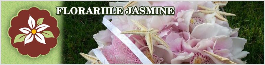 FLORARIILE JASMINE Logo