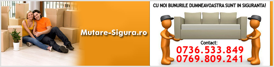 Mutari si relocari marfuri, bunuri si mobilier Bucuresti Logo