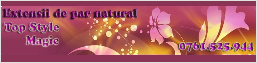 TOP STYLE MAGIC Logo
