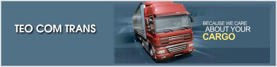 TEO COM TRANS Logo