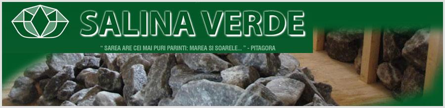 Salina Verde Logo