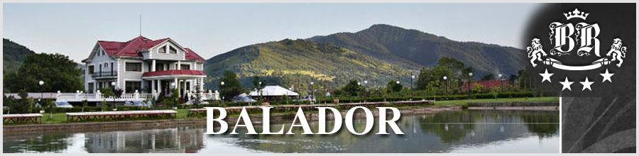 BALADOR Logo