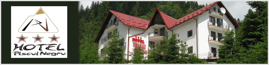 HOTEL PISCUL NEGRU*** jud. Arges Logo