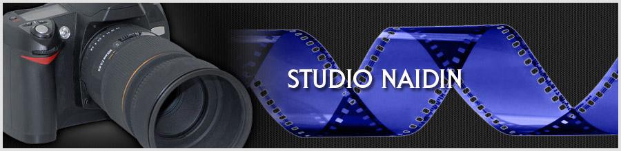 Studio Naidin Logo