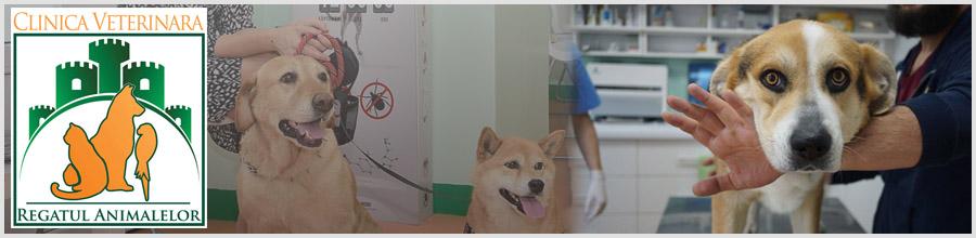 Clinica Veterinara REGATUL ANIMALELOR Logo