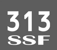 313 SAFETY SECURITY & FIRE Logo