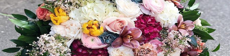 Imodflowers - florarie online Bucuresti Logo