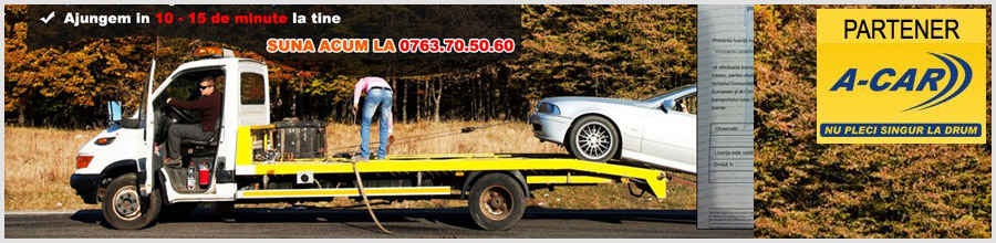 DANI ROMANIA EXPORT - Tractari auto si transport utilaje Logo