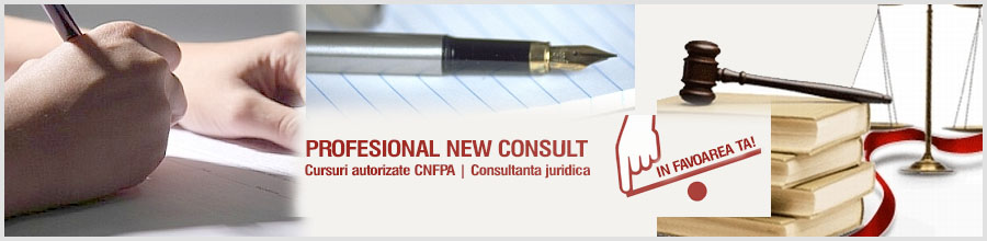 PROFESIONAL NEW CONSULT Logo