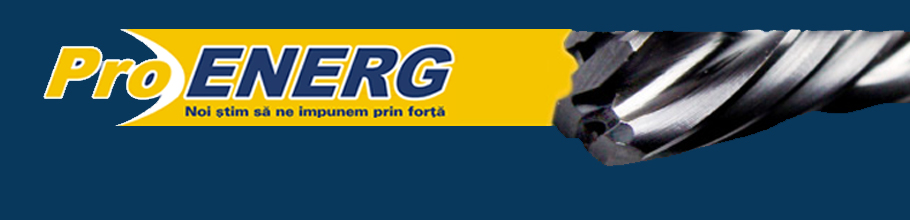 PROENERG Logo