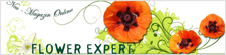 FLOWER EXPERT Logo