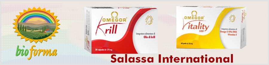 Salassa International Logo