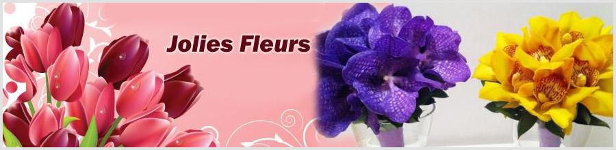 Jolies Fleurs Logo