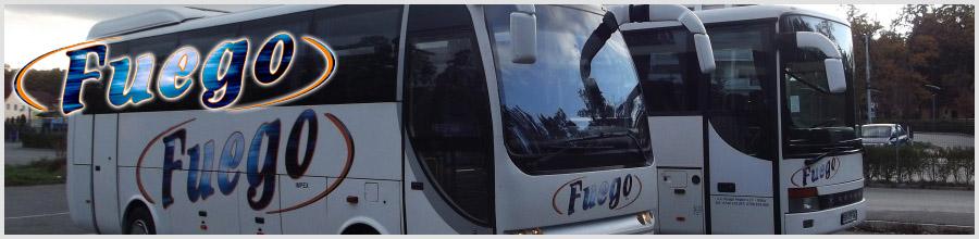 FUEGO IMPEX Logo