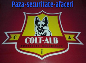COLT ALB Security Logo