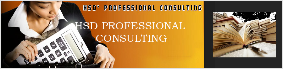 HSD PROFESSIONAL CONSULTING Logo