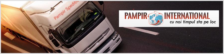 PAMPIR INTERNATIONAL Logo