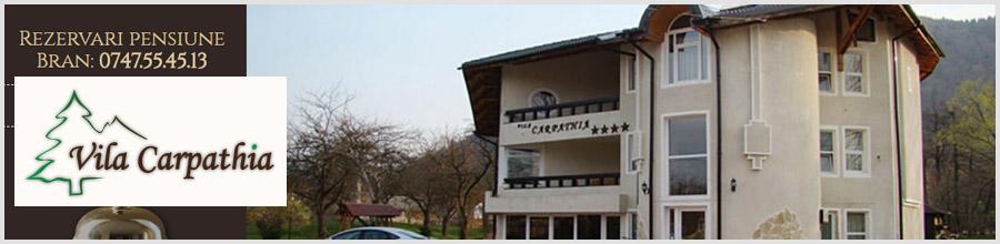 VILA CARPATHIA**** - jud BRASOV Logo