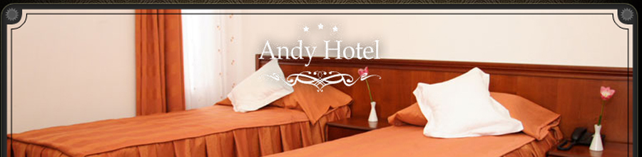 HOTEL ANDY*** Logo
