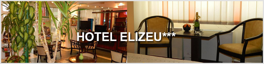 HOTEL ELIZEU*** Logo
