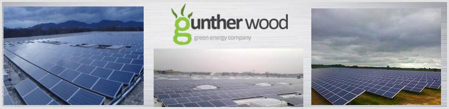 Gunther Wood Logo