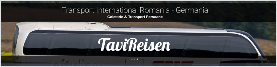 Tavi Reisen Logo
