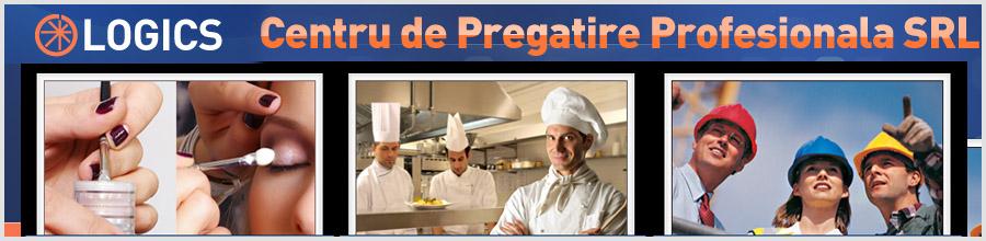 LOGICS CENTRU DE PREGATIRE PROFESIONALA Logo